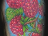 Raspberrys Left Shoulder